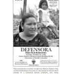 Defensora poster